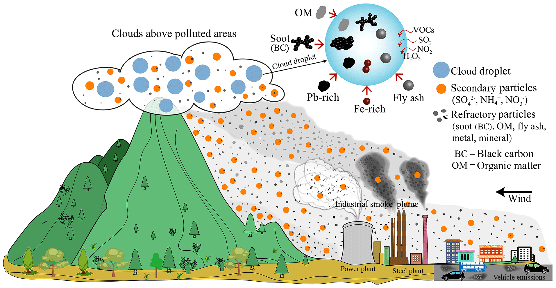 ACP - Cloud scavenging of anthropogenic refractory particles