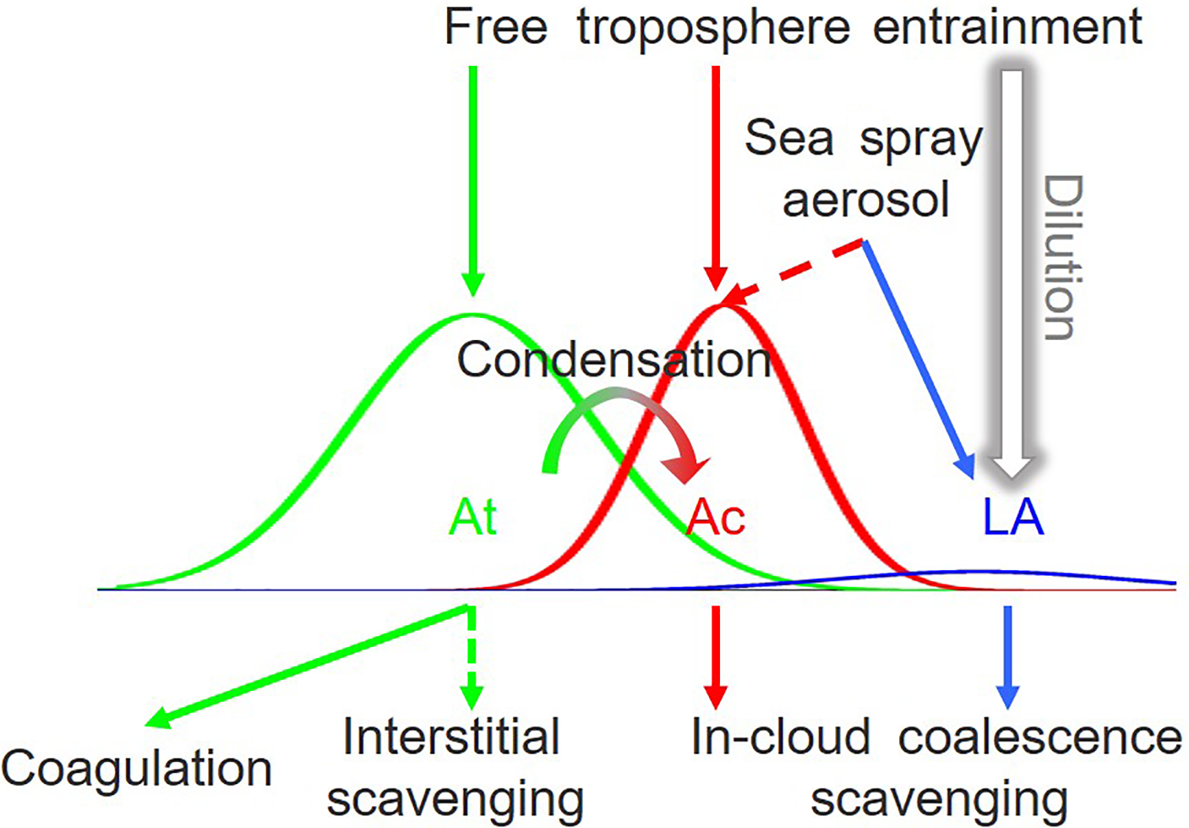 ACP - Marine boundary layer aerosol in the eastern North