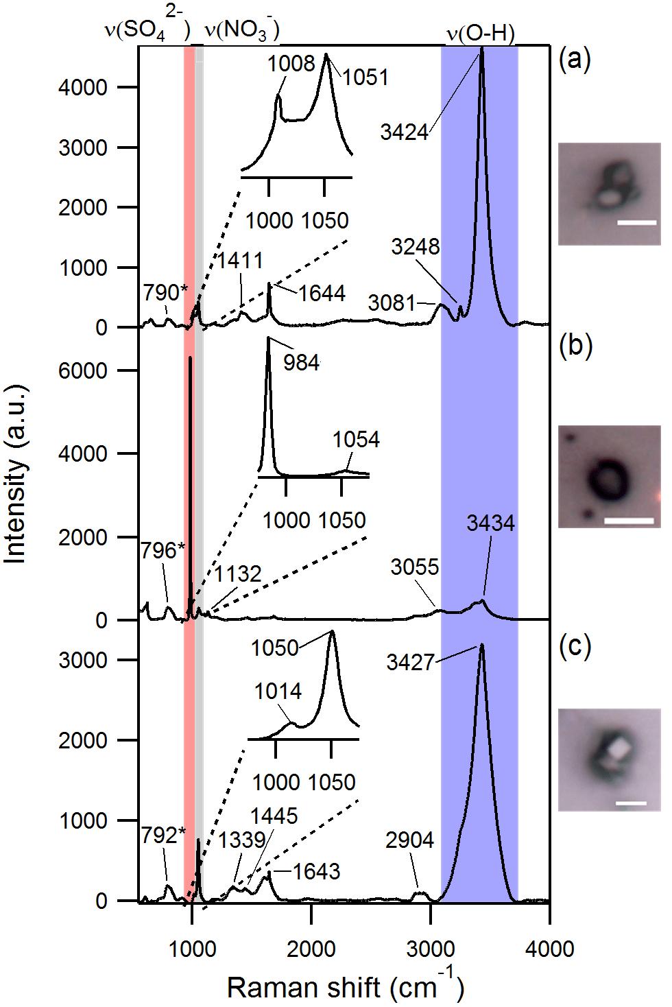ACP - Secondary sulfate is internally mixed with sea spray