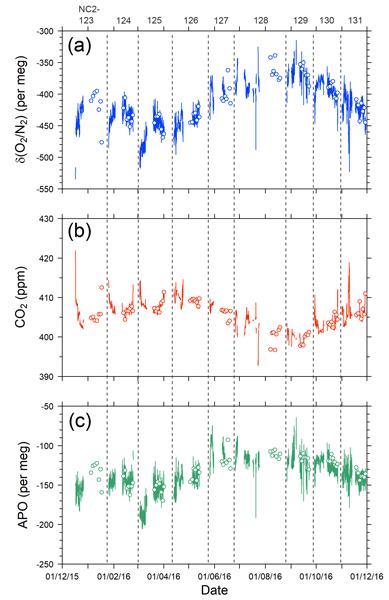 BG - Relations - Data-based estimates of the ocean carbon sink