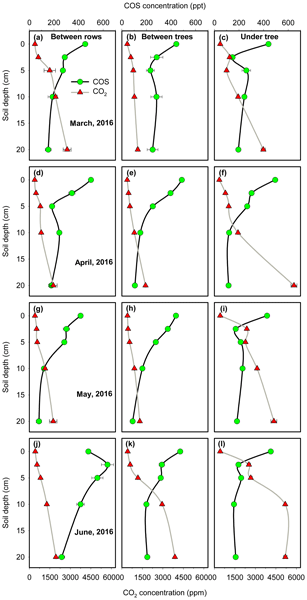 BG - Relations - Interpreting canopy development and