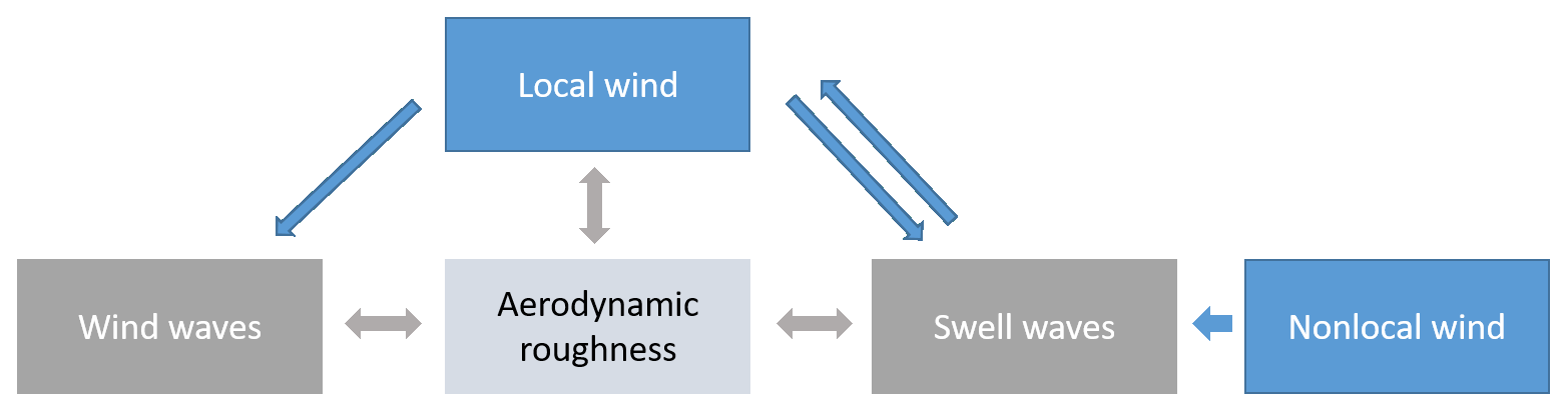ACP - A new roughness length parameterization accounting for wind